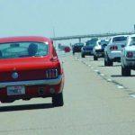 Mustangs 2