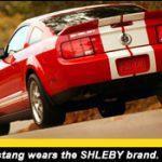2007shelbygt500_shelby brand