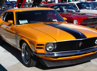It's the Petersen's turn to celebrate Mustang's birthday