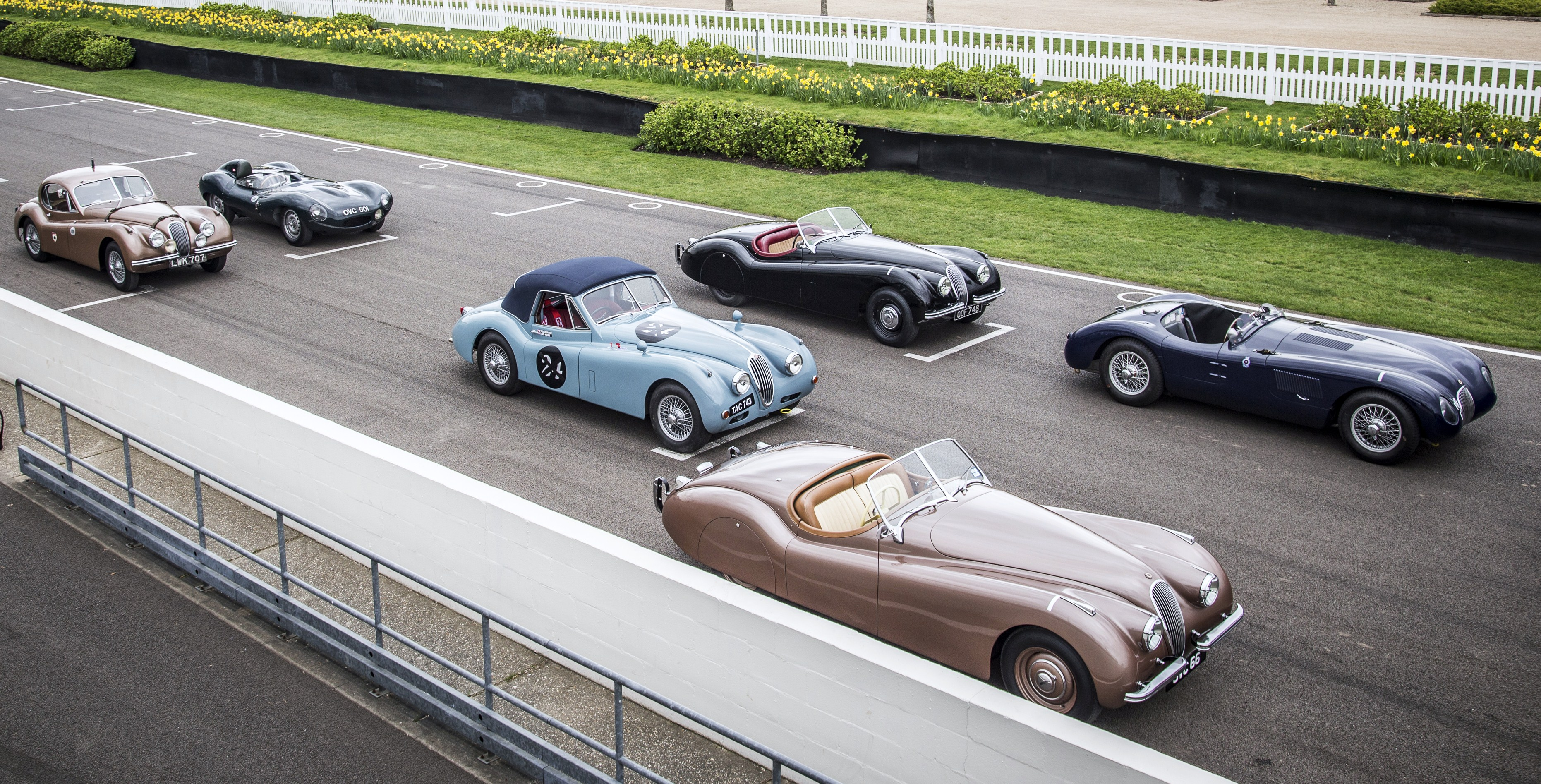 Famous Jaguar Sports Cars Racers Entered In Mille Miglia