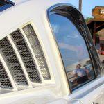 Mustang 14