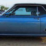 Mustang 21