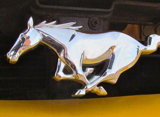 Mustangs Across America