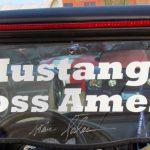 Mustangs 22