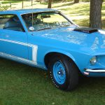 Going Thing Mustang