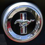 Mustang-badge-229-Howard-Koby-photo
