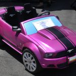 Shelby-Mustang-toy-302-Howard-Koby-photo