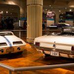 Mustangs on display_rear
