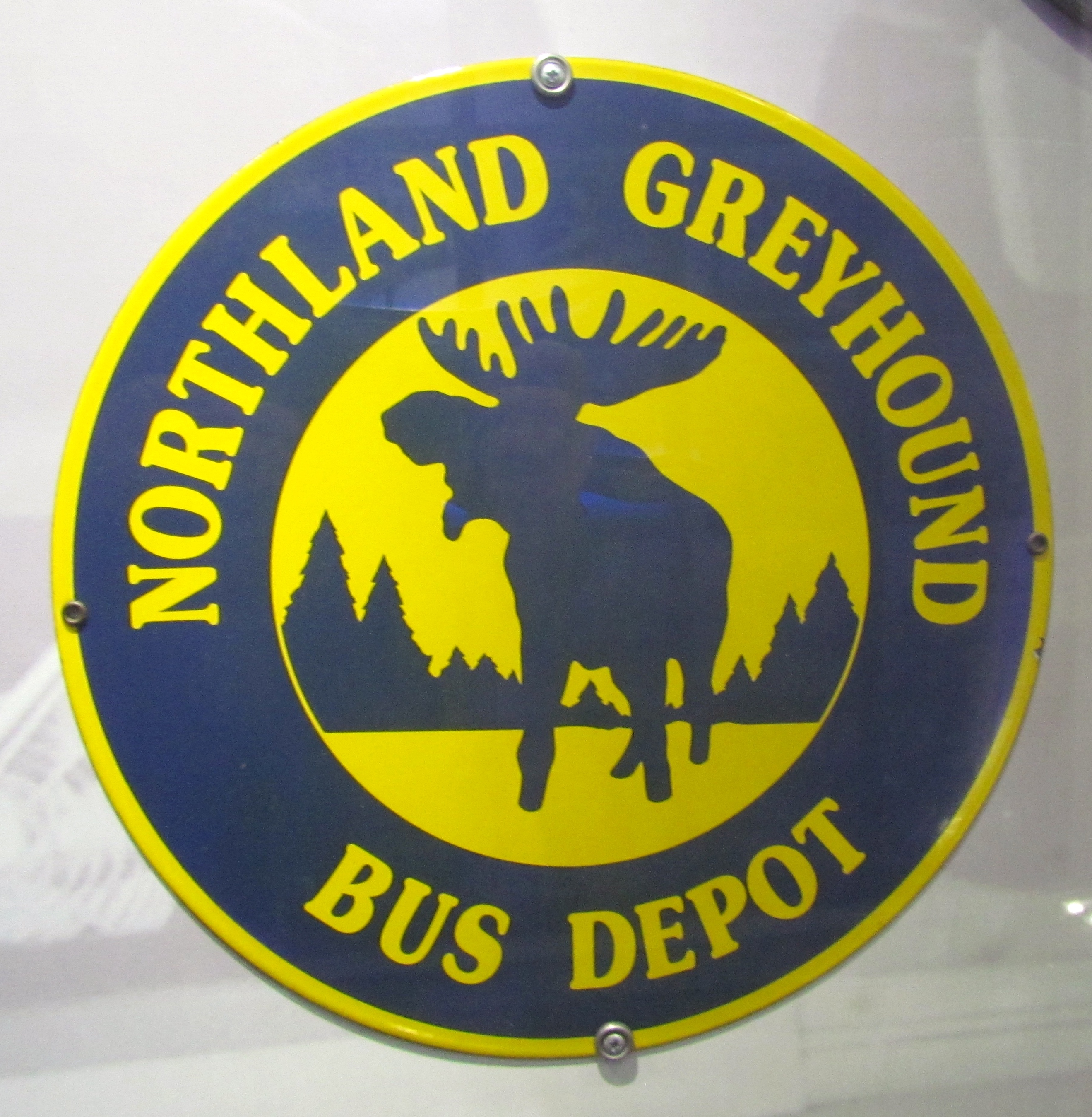 Eye Candy Greyhound Celebrates Its Centennial With Historic Bus
