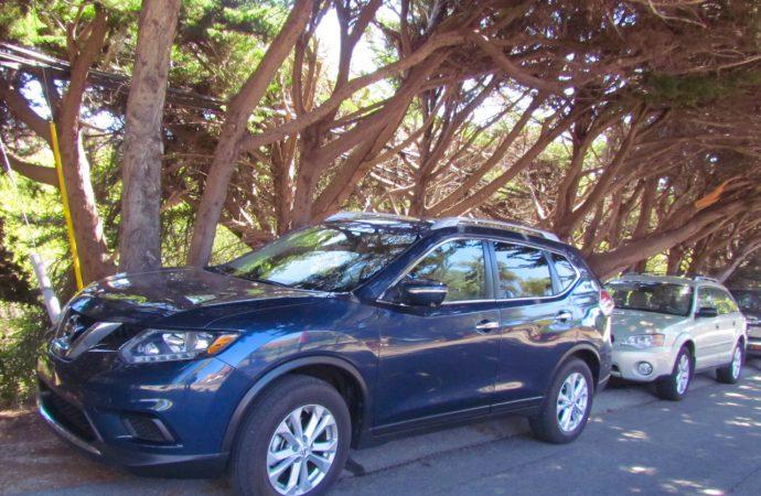 Driven: 2015 Nissan Rogue SV