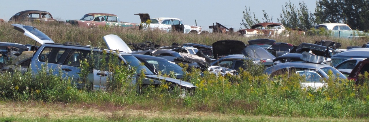 Crashes and classics at Cooks Auto Parts in Harrison, Michigan   Larry Edsall photos