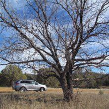 Driven: 2016 Mitsubishi Outlander SEL