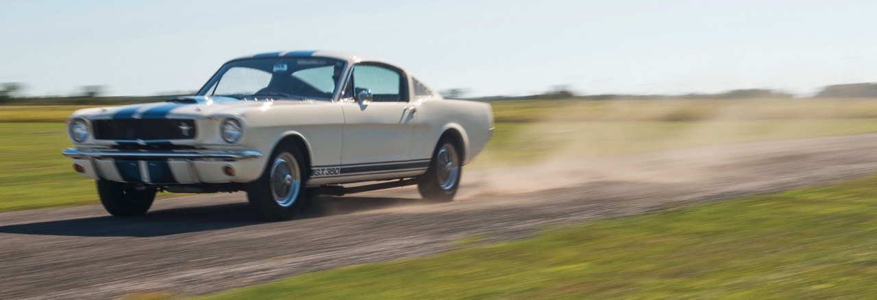 One of several Shelby Mustangs in the sale