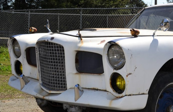 The rare, the old and the odd at Lucky Auctions' Spring Classic