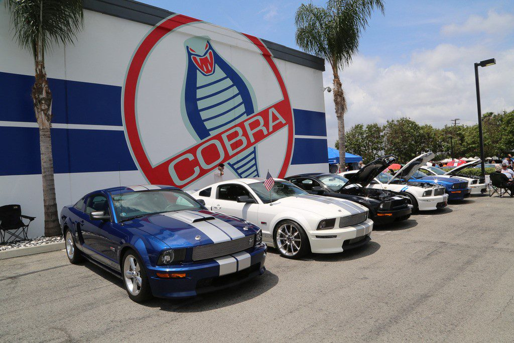 shelby show 2