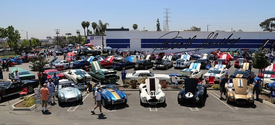 shelby show