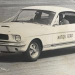 Shelby_archive