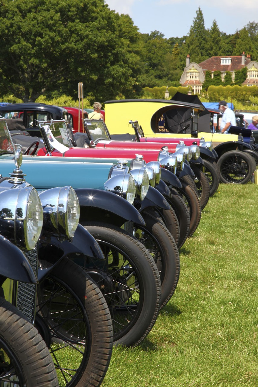 A row of Austin 7s at 2015 gathering