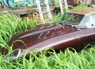1969 Jaguar XK-E Series II