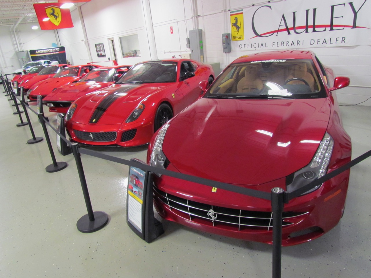 Red exotics are part of the Ken Lingenfelter collection that will be open to raise money for charity | Larry Edsall photos
