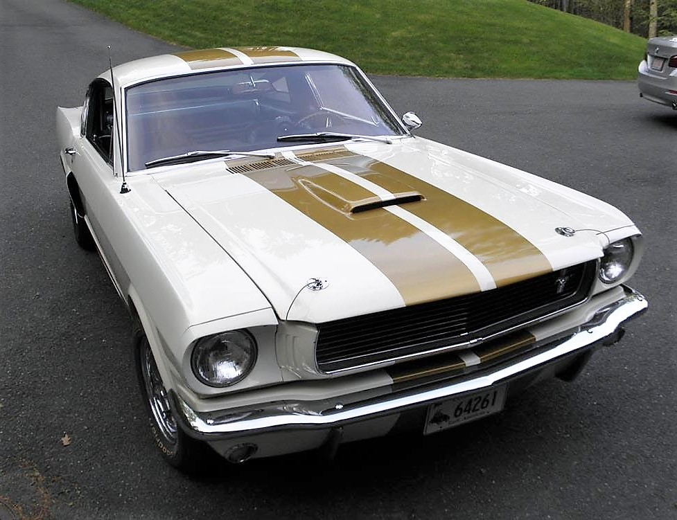 The Shelby GT350H has had a color change from black with gold stripes to white with gold stripes