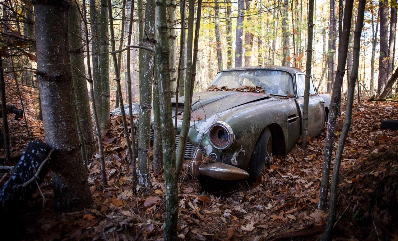 Aston Martin DB4 was found in New Hampshire woods