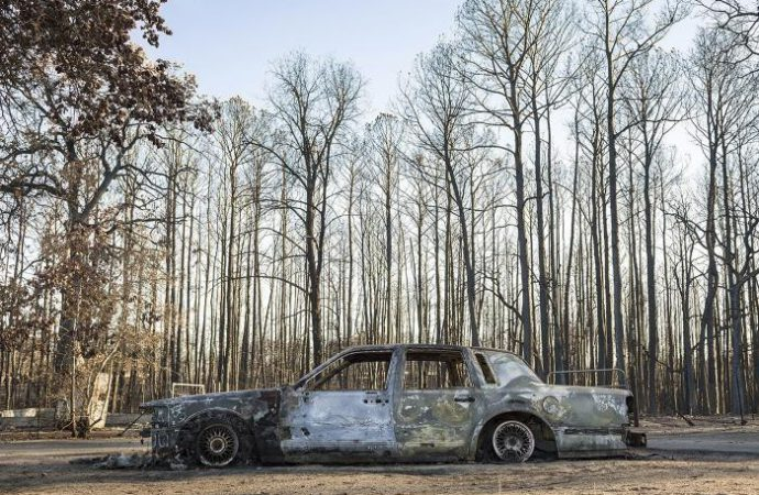 Susan Eley Fine Art museum home to 'car-art' exhibit
