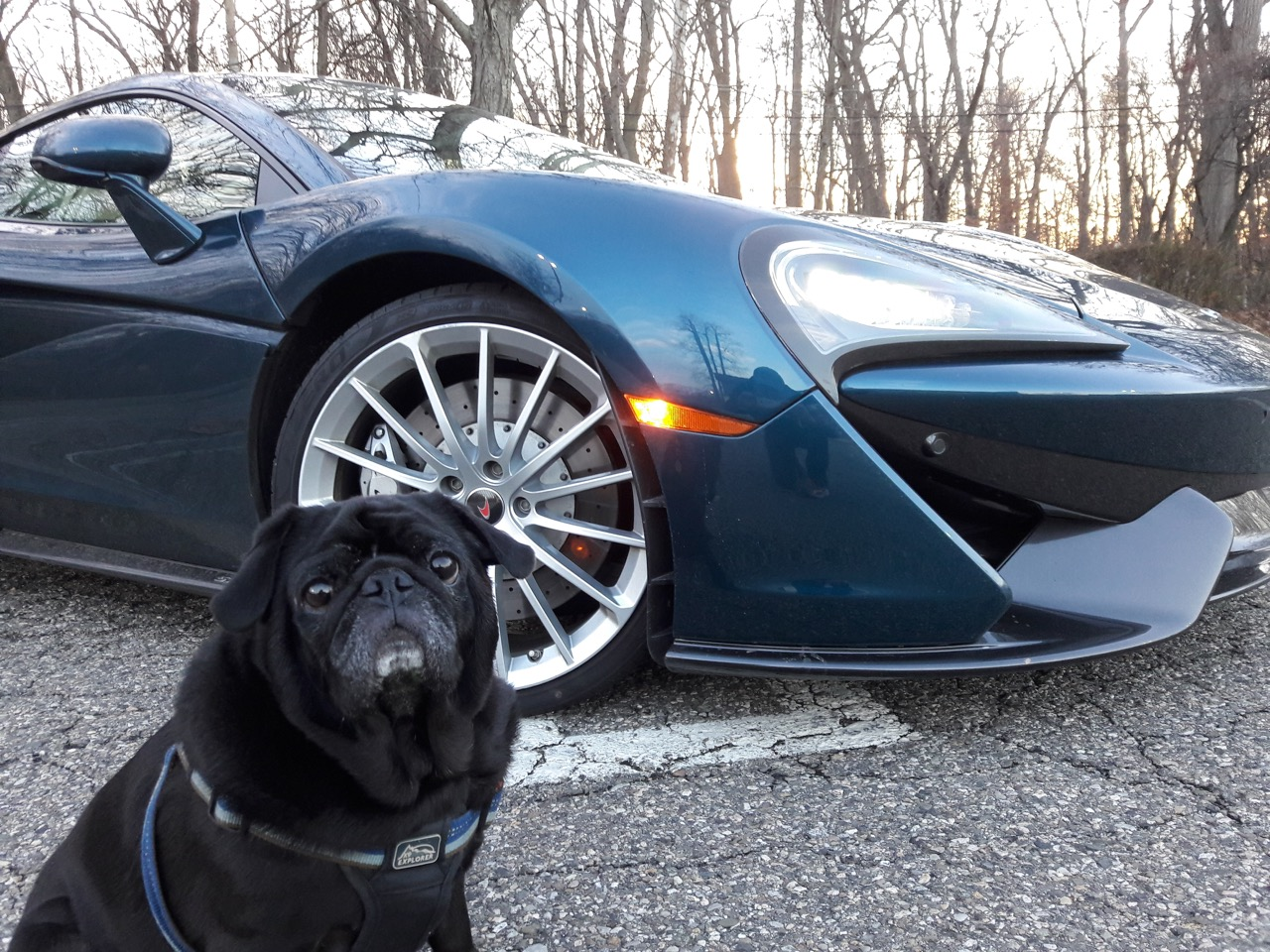 Merlin and the McLaren | Nick Kurczewski photos