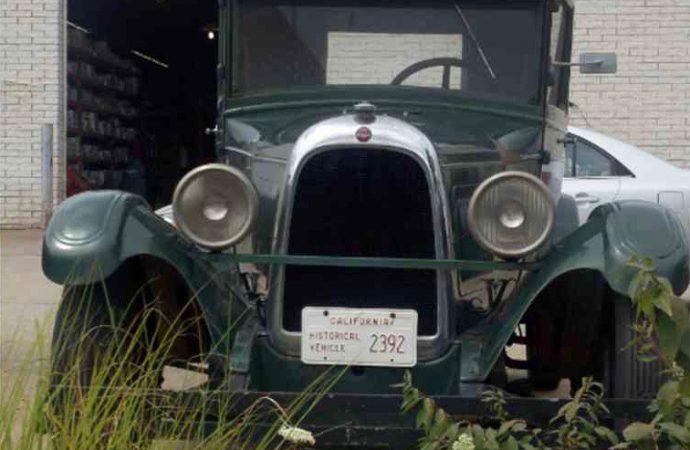 1928 Whippet