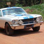 Mustang.RESIZE