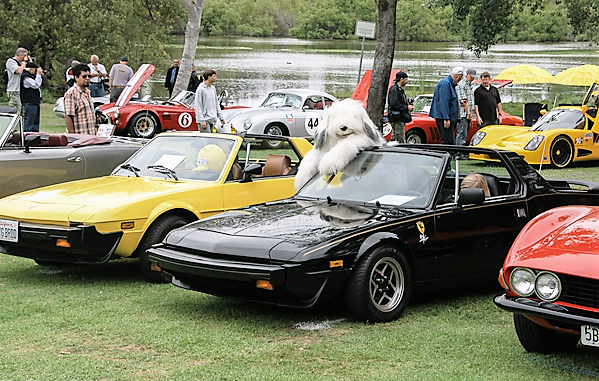 Sports cars and a show dog at last year's Huntington Beach Concours | Huntington Beach Concours