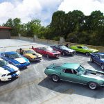 Speed Family Mustangs