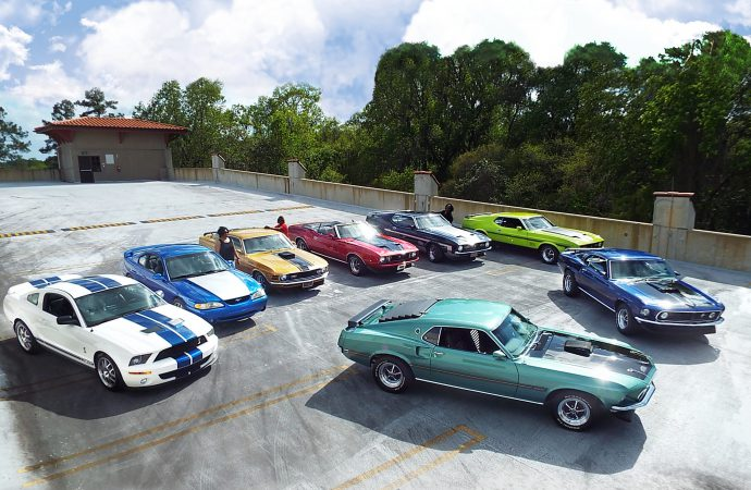 Family's pet pony turned into pony car collection