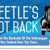 Beetle's backside tells story of the Bug's evolution