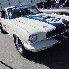 Shelby's Original Venice Crew challenges Jaguar, Aston to race