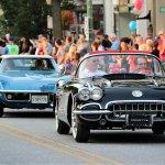 Corvettes at Carfliels Larry Edsall