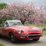 The winning E-Type Jaguar
