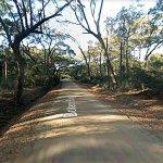 botany-bay-road