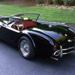 shelby-cobra-roadster-rear