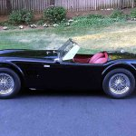 shelby-cobra-roadster-side