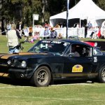 Ford Shelby GT 350H drag racer, road racer and rally car.jpg