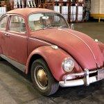 Kathleen_Brooks_1967_Annie_Beetle_Restoration-Large-9180
