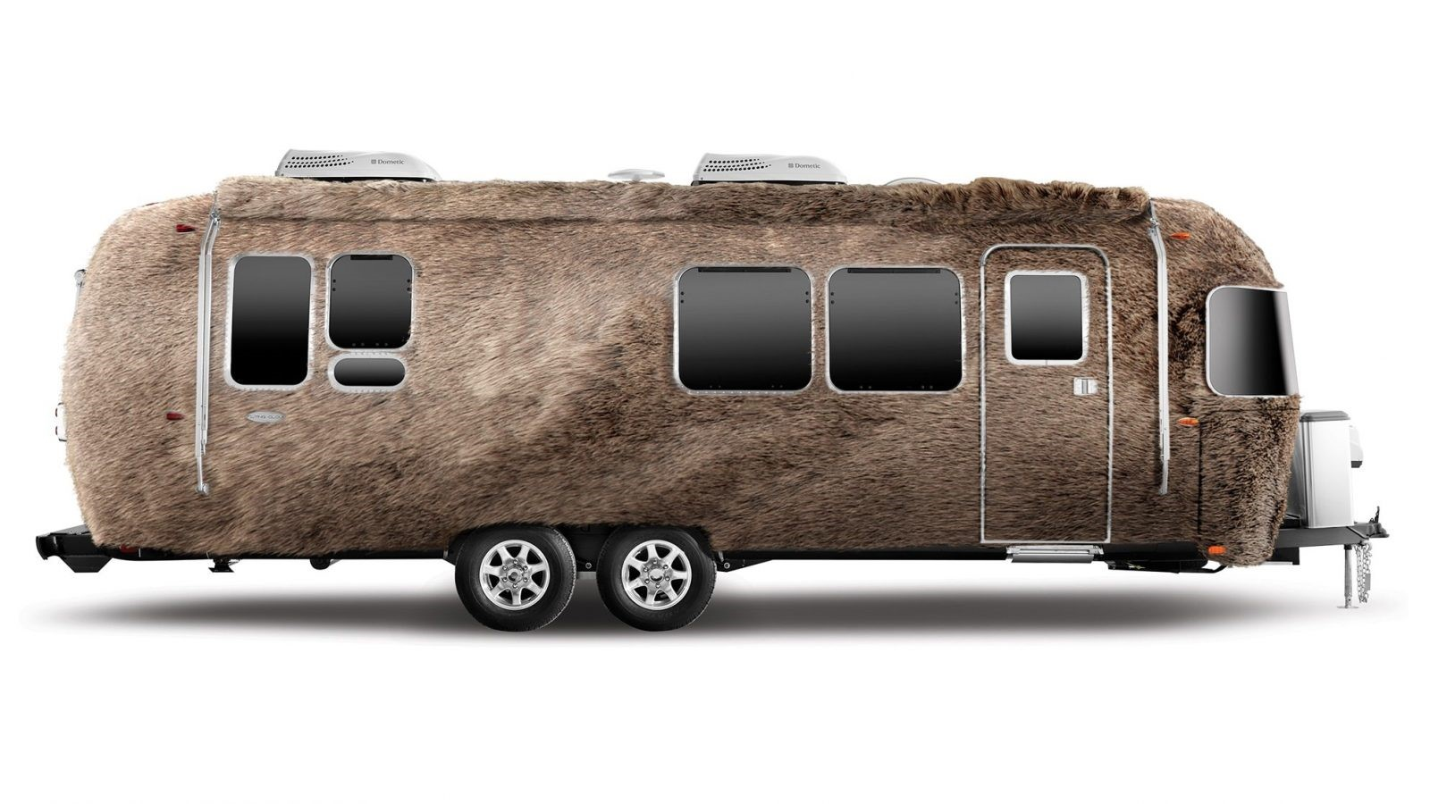This trailer is un-bear-ably cool. We'll see ourselves out. | Airstream photo