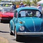 Slug bug on the road