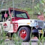 jurassic-park-jeep-wranglers-at-dinosaur-ridge-morrison-colorado_100705621_h