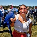 A Bird in the hand #3036-Howard Koby photo