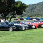 A herd of E24 6 Series BMWs
