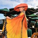 Butterfly at Meguiars Hospitality #3077-Howard Koby photo