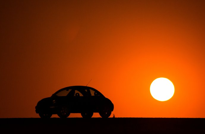 Bugs across the Sahara rally planned for 2020