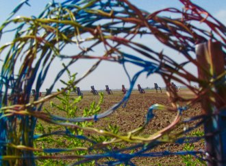 The evolution of the art at Cadillac Ranch